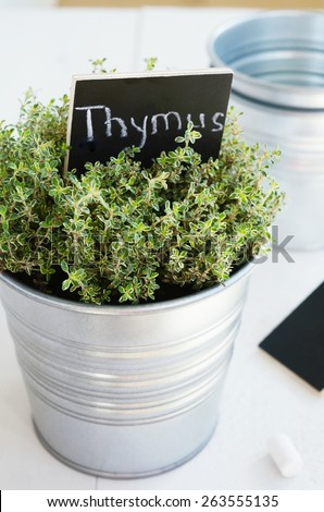 Herb Planter herb planter stock images, royalty-free images & vectors