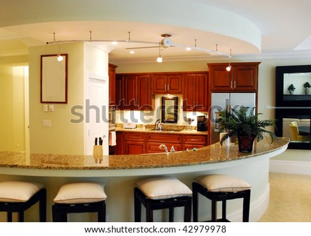 Kitchen in the luxurious house