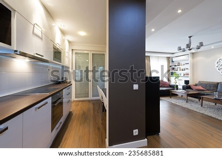 Kitchen interior with a view to a living room  - stock photo