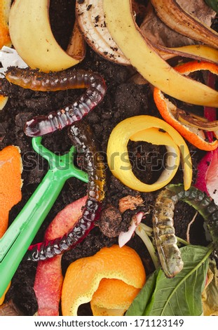 kitchen scraps  in compost soil  pile  surface  - stock photo