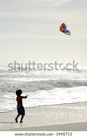 Kite Flying at Dusk - stock photo