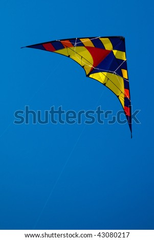 Kite in clear blue sky