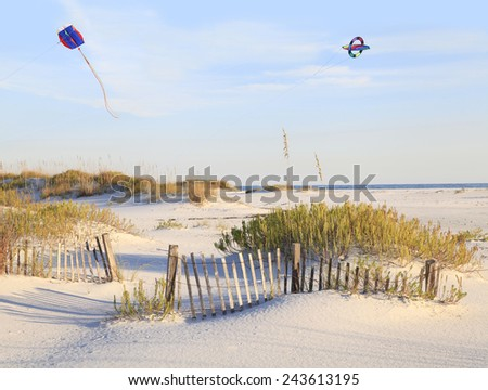 Kites Flying Over a Beautiful White Sand Beach - stock photo