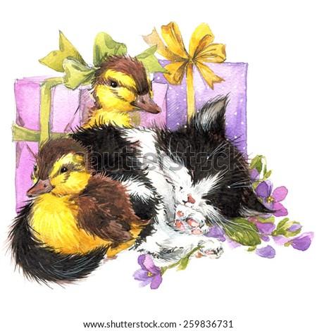 kitten and cute bird. watercolor illustration for kid Birthday  - stock photo