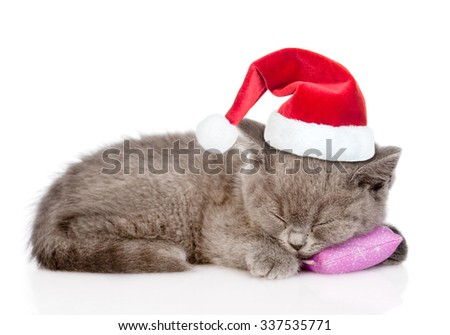 Kitten in red  christmas hat sleeping on pillow. isolated on white background. - stock photo