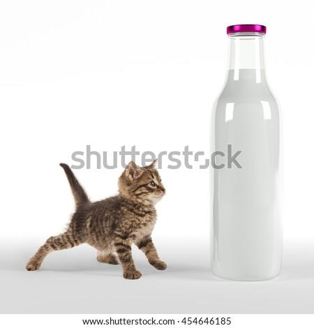 Kitten looking onto huge bottle of milk - stock photo