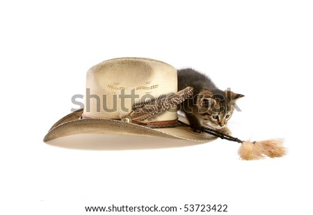 Kitten playing with tassel on cowboy hat - stock photo