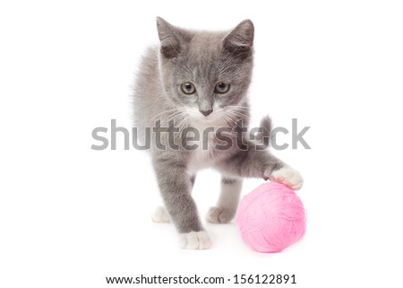 Kitten with a ball of yarn. Isolated on white background - stock photo