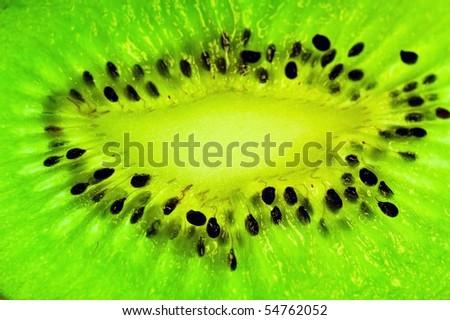 Kiwi fruit slice - stock photo