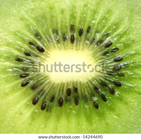 Kiwi fruit slice, for backgrounds or textures