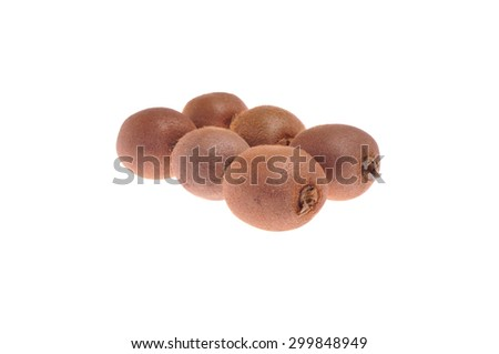 Kiwi fruits isolated on white background - stock photo