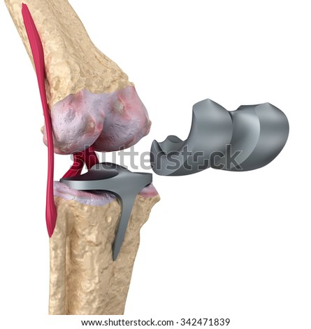 Hinge Joint Stock Images, Royalty-Free Images & Vectors ... Hinge Joint Knee