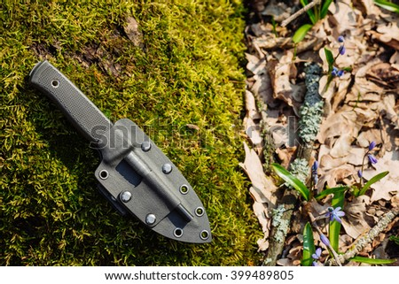 Knife with the plastic kydex sheath in the forest background. survival and bushcraft concept