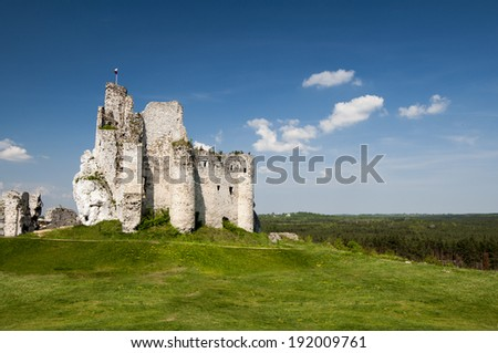 knight's castle in Mirow, Poland - stock photo