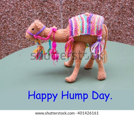 Knitted camel with saying Happy Hump Day - stock photo