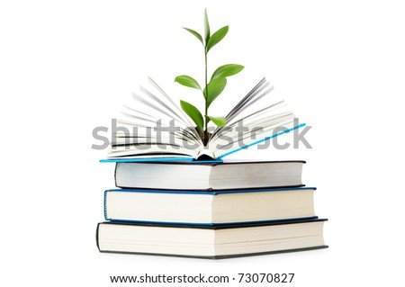 Knowledge concept - Leaves growing out of book - stock photo