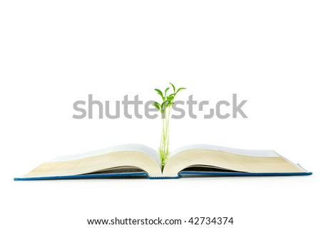 Knowledge concept with books and seedlings - stock photo