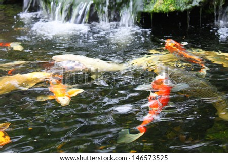 Japanese garden stone ornament stock images royalty free for Japanese pond ornaments
