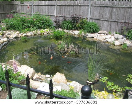 Pond stock images royalty free images vectors for Koi pond insert