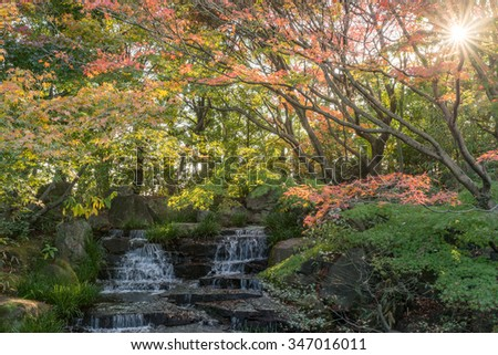 Kokoen Garden fall foliage koyo momiji red maple and waterfalls in Autumn under golden sky sunset. Koko-en Garden is a Japanese garden located next to Himeji Castle in Hyogo Prefecture, Japan - stock photo