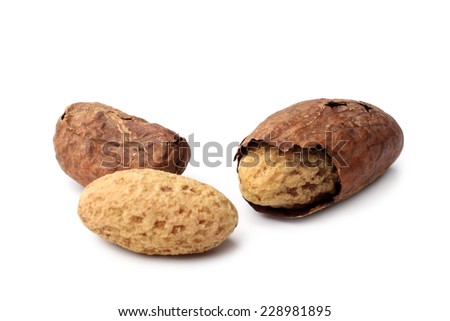 Kola nuts on white background - stock photo