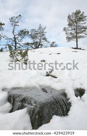 Koli National Park in Finland - stock photo