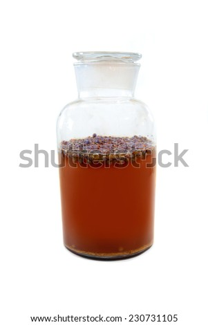 Kombucha in a glass jar brewing with juniper berries and tea - stock photo