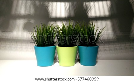 Watering can color color background copy stock photo for Gardening tools kuala lumpur