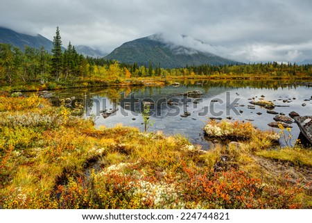 Kuelporr mountain with peak hidden in clouds reflected in shallow Polygonal northern taiga forest lake with lichen-covered rocks and colorful grass in foreground - stock photo