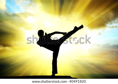 Kung fu at the edge. Element of design. - stock photo
