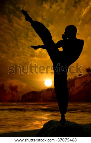 Kung Fu fighter practising at sunset