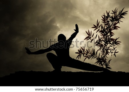 Kung Fu Martial Art Background - stock photo