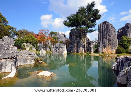 KUNMING, CHINA - DECEMBER 1, 2014: Stone Forest is a set of karst formations caused by the dissolution of limestone and are believed to be over 270 million years old. - stock photo