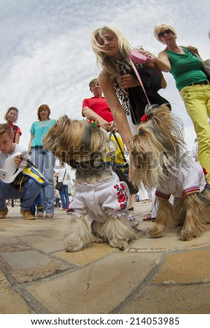 Kyiv, Ukraine-August 24, 2014: After the parade, the Independence Day of the citizens in their national costumes gathered at St. Sophia's Square with domestic dogs in picturesque  costumes