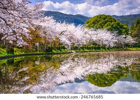 Kyoto, Japan in the Spring at Daikaku-ji Temple's pond. - stock photo