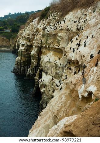 La Jolla Cove - Coastline - Sea wall - stock photo