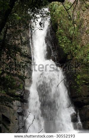 la Mina falls at el Yunque rainforest, Puerto Rico - stock photo