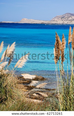 La Pelosa beach - italy - sardinia - stock photo