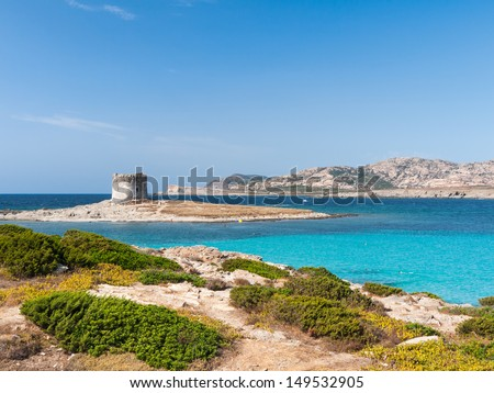 La Pelosa beach view with beautiful azure colored water and defence tower as an icon of Stintino Sardinia