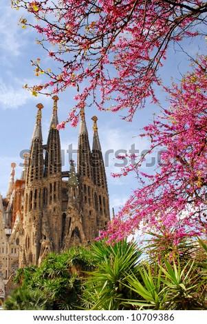 La Sagrada Familia in Barcelona with pink spring blossom - stock photo
