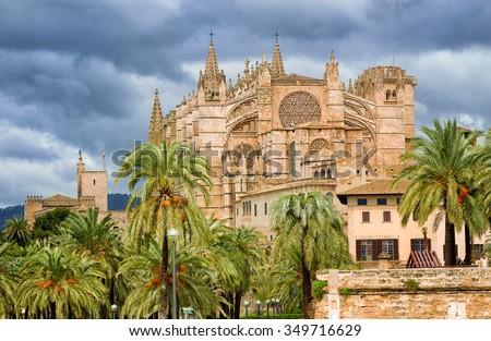 La Seu, medieval gothic cathedral of Palma de Mallorca, in the palm tree garden, Spain - stock photo