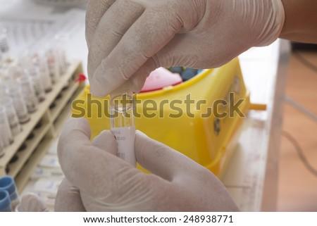 lab, blood test - stock photo