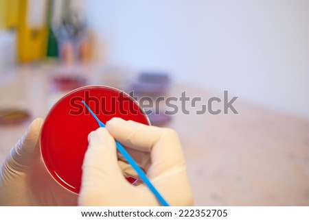 Laboratory doctor holding inoculation loop and petri dish. Medical laboratory concept - stock photo