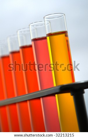 Laboratory glass test tubes filled with orange and red liquid on a rack for an experiment in a science research lab