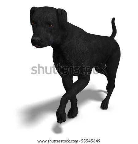 Labrador Retriever Dog. 3D rendering with clipping path and shadow over white