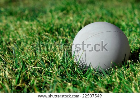 Lacrosse Ball on Grass