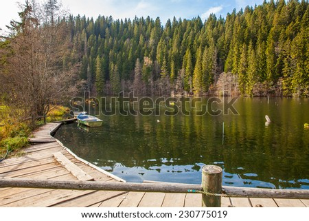 Lacul Rosu the Red Lake or Killer Lake, Eastern Carpathians, Romania - stock photo
