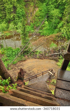 Ladder and Bridge on the West Coast Trail on Vancouver Island, British Columbia, Canada - stock photo