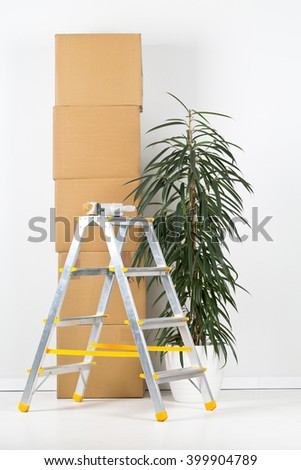 Ladder and plant with stack of moving carton boxes in front of white wall - stock photo