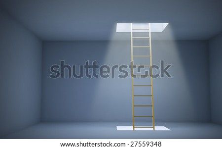 Ladder to a higher level
